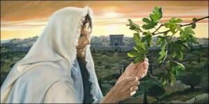 Jesus-Holy_Monday-fig_tree